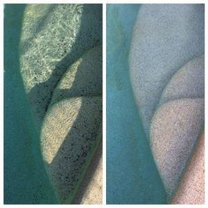 Algae stains